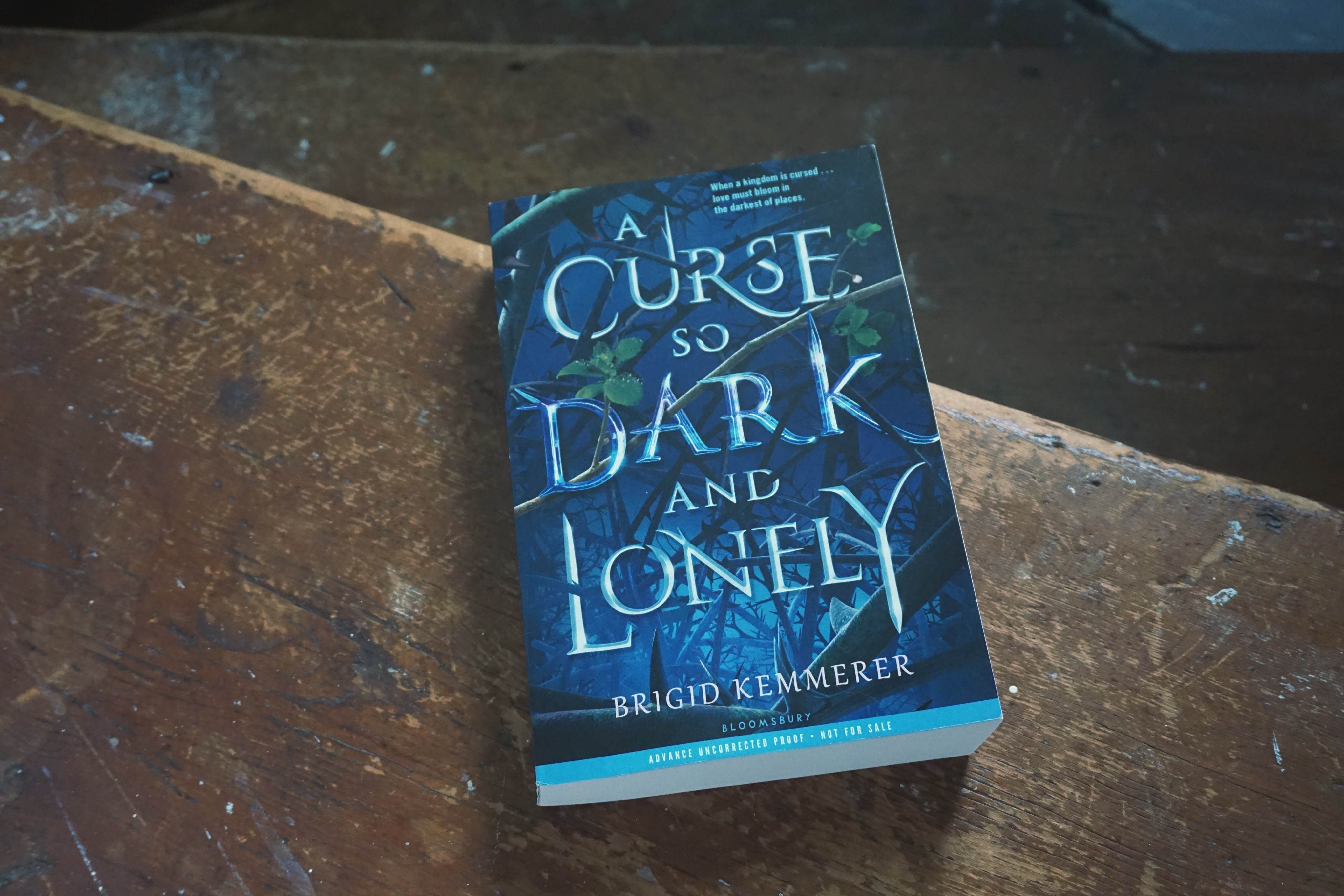 Breaking the curse of loneliness